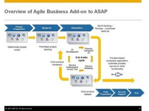 Overview of Agile Business Add-on to ASAP