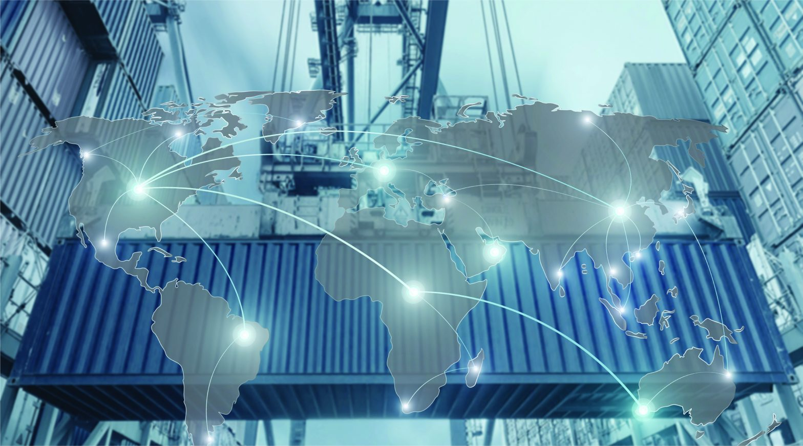 3PL & Freight Forwarders